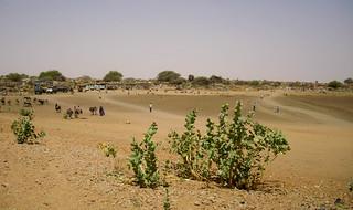 ZamZam IDP