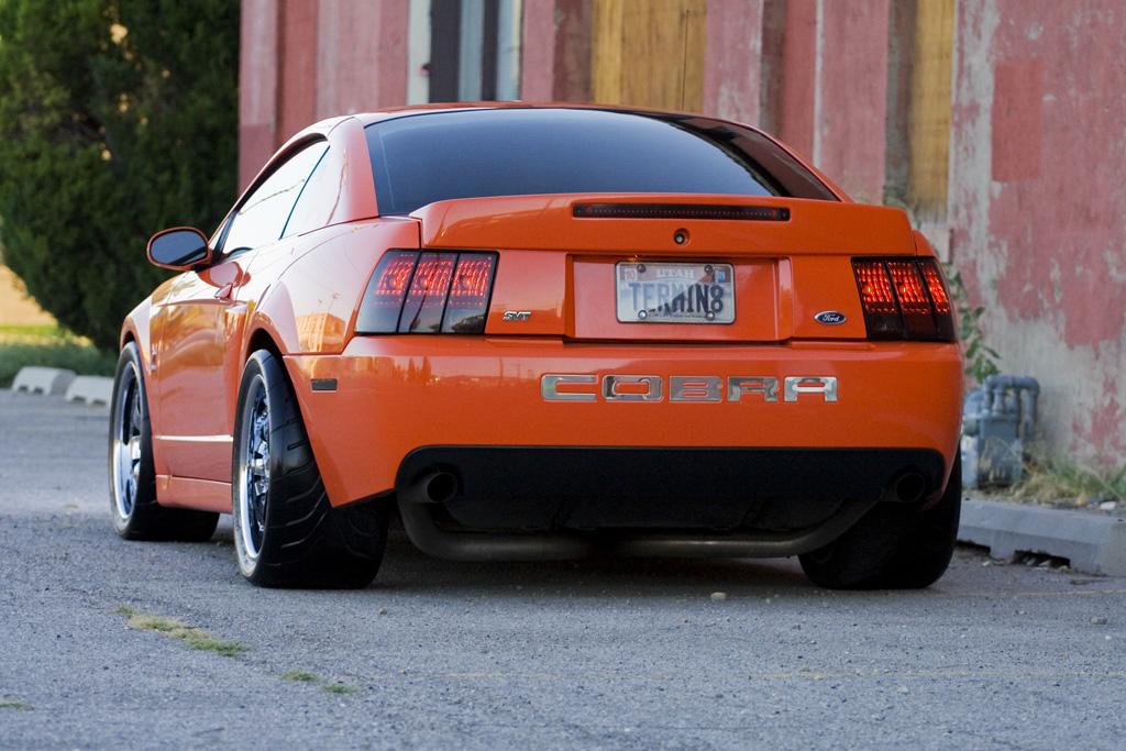 2003 competition orange cobra transportation in photography on forums. Black Bedroom Furniture Sets. Home Design Ideas
