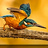 the All Kingfishers group icon