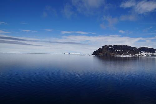 592 Weddell Sea met Adeliepinguin