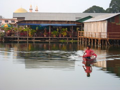 Laguna palafitos