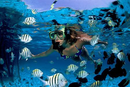 Underwater adventure at Riviera Maya