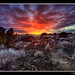 Lava Flow Sunset - hdr