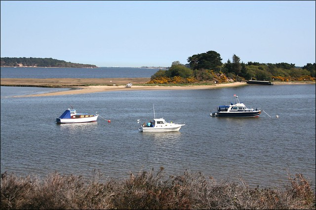 Poole Harbour from Arne