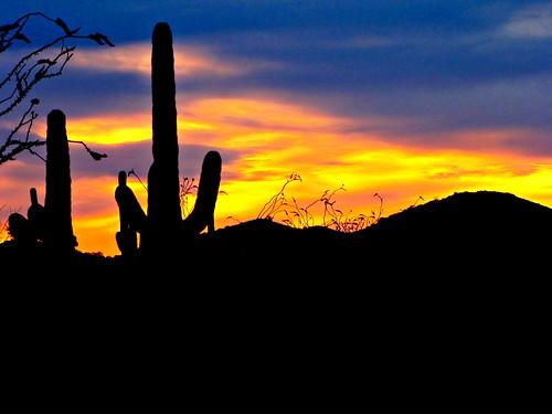 arizona usa sunrise hotel resort fourseasons scottsdale