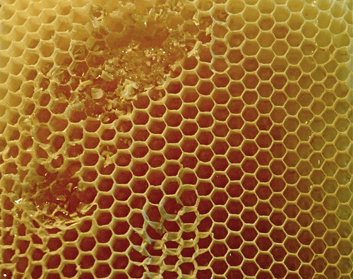Molested honeycomb