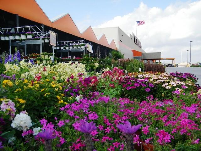 Home Depot Garden Center Explore Thien Gretchen 39 S Photos