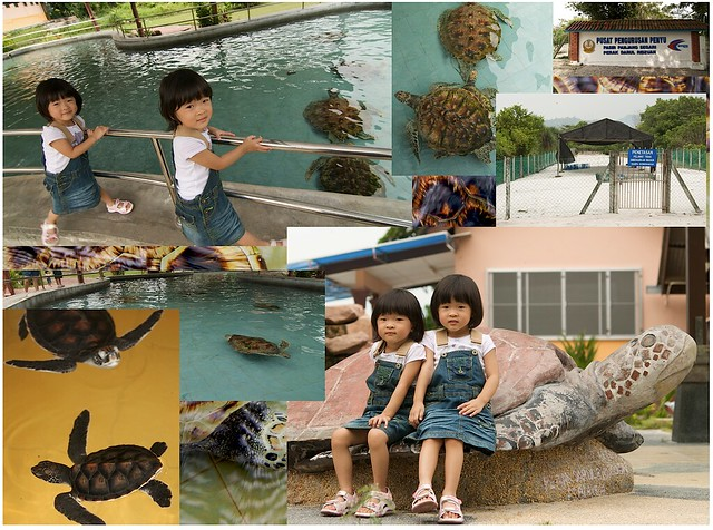 Renice and Renee at the Pasir Panjang Segari Turtle Management Center (via Aperture Book feature)