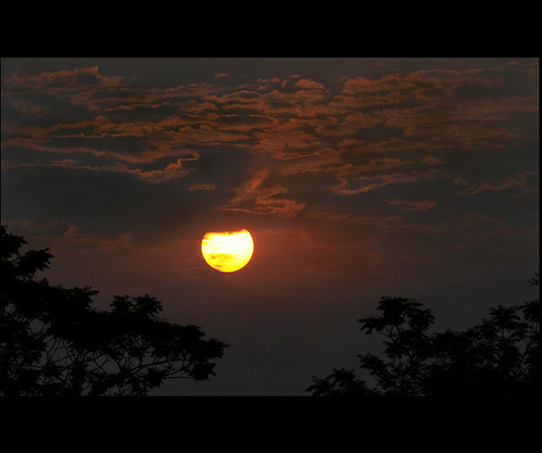 park sun india nature sunrise landscape national assam soe kaziranga blueribbonwinner mywinners abigfave theunforgettablepictures mauekay