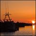 A Bonavista Sunset by Peter Brake