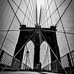 New York City (UWA)