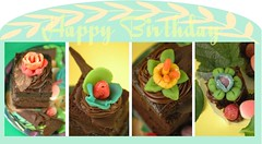 Food: my cake decorating & edible confections