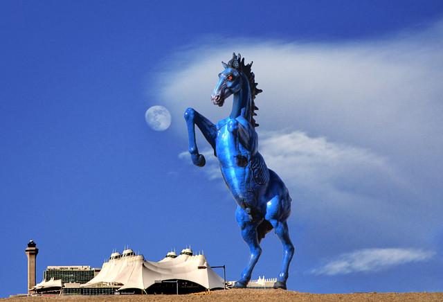 bluebronco