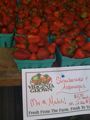 virginia strawberries