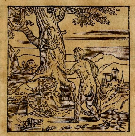 Puer et Scorpius