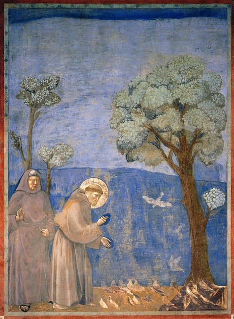 Giotto - La predica agli uccelli. Assisi, Basilica superiore di San Francesco