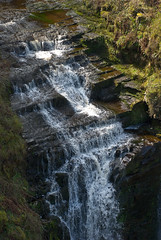 stream, waterfall, water, rapid, river, nature, body of water, watercourse, wilderness, state park,