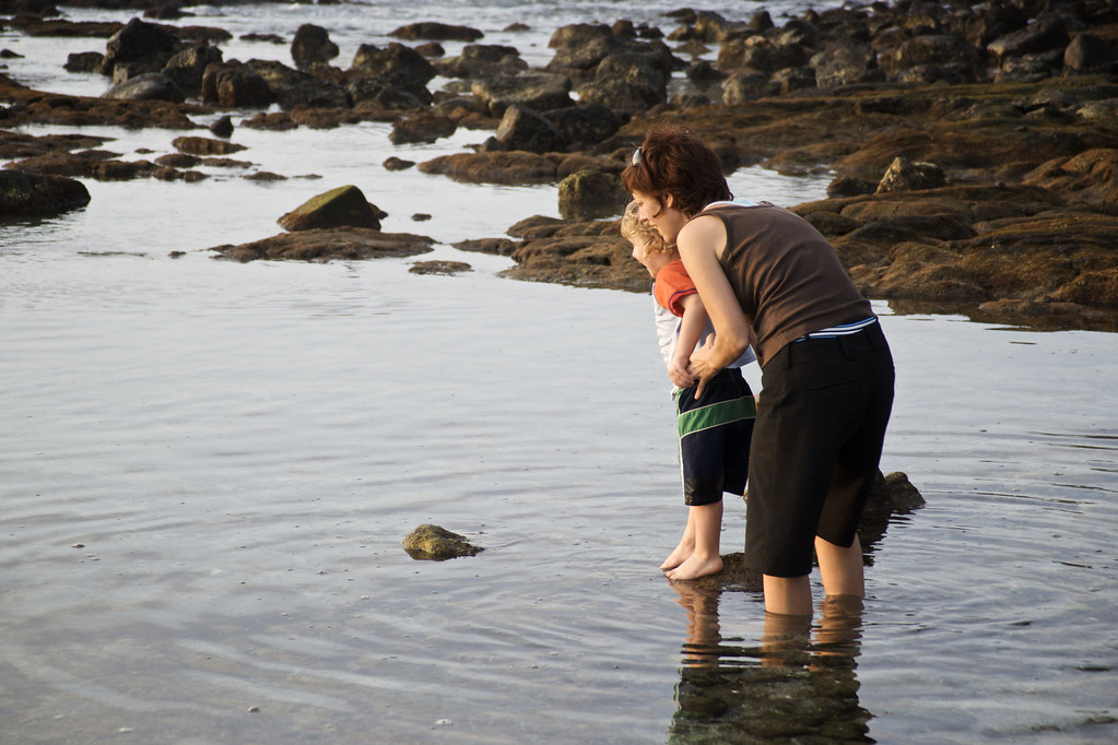 Lorenz & Sis Looking at Fishes on the Kona Rocks