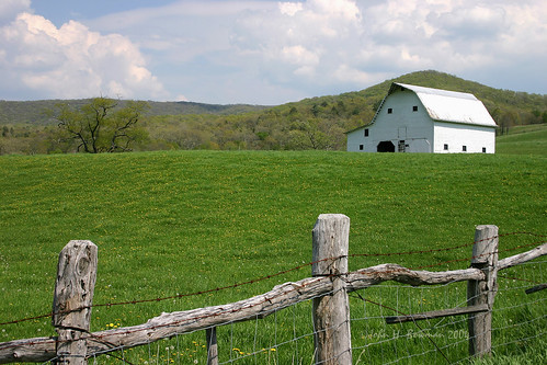 2004 spring barns may westvirginia may2004 tinroof bartow mountainviews pocahontascounty greatskies fencesgates westvirginiabarns