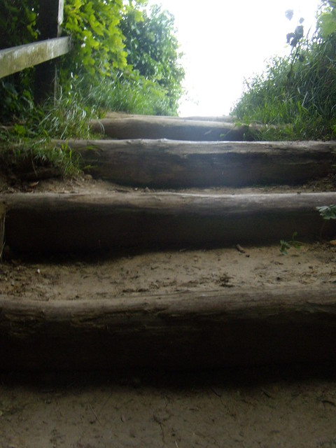 Some of the many steps