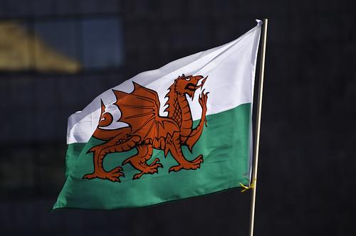 Welsh Flag, St David's Day / Baner Cymru, Dydd Gŵyl Dewi 2009