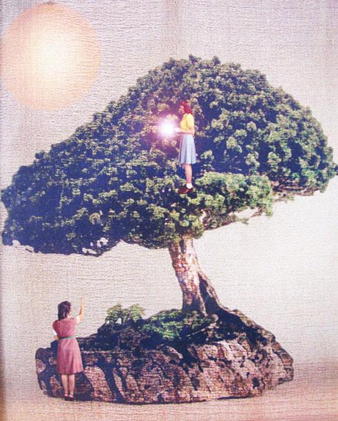 איילת השחר-כהן, מתוך צבע טרי 2