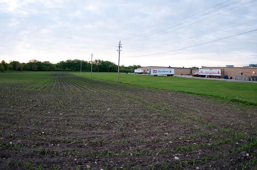 usa field store humboldt corn farm iowa ia grocery hyvee