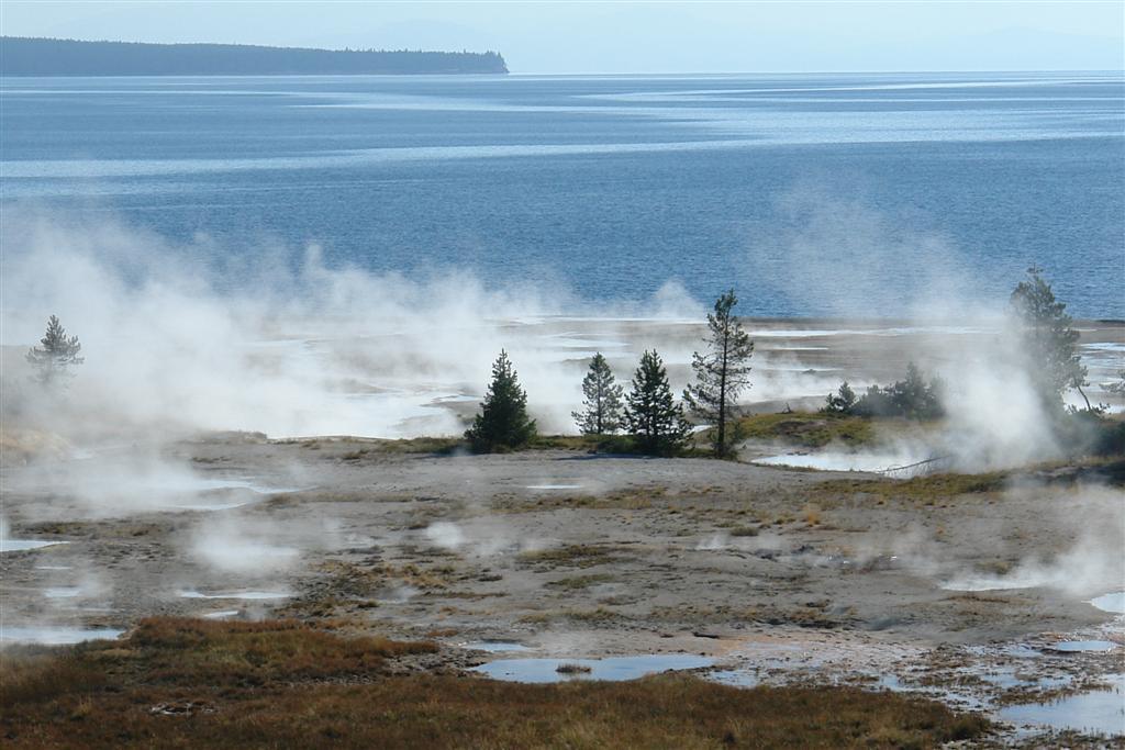 Suelo caliente junto al lago Yellowstone en West Thumb parque nacional yellowstone - 3421144080 0b1dafa579 o - Parque Nacional Yellowstone, cómo visitarlo en dos días