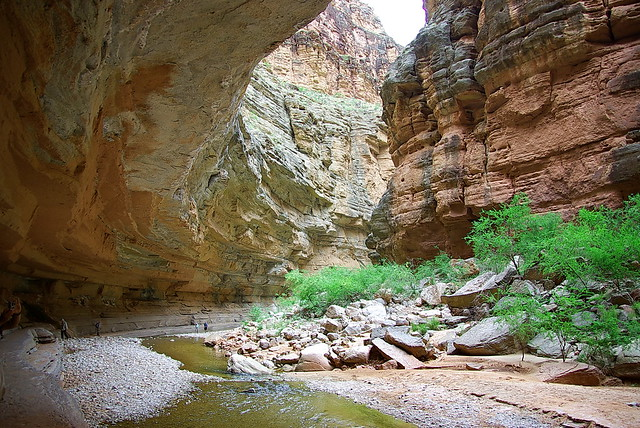 Under The Ledge On Kanab Creek Grand Canyon Flickr
