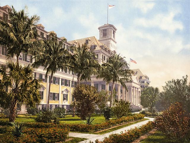 Royal Poinciana Palm Beach