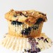 Omnometrists' favourite blueberry muffins.