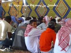 مؤتمر قبائل وعشائر سيناء بوادي العمر سيناء 5