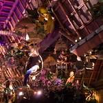 Disneyland June 2009 0069