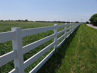 Long line of fencing near Rush Creek