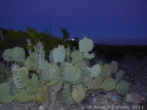 Moonrise in Big Bend National Park, Texas