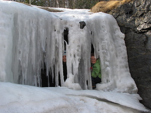 """""""Trapped Under Ice"""""""