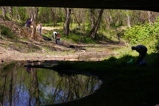 Gillies Creek 4.18.09 (26)