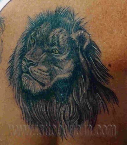 Black shade lion tattoo flickr photo sharing for How to shade tattoos
