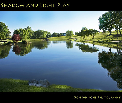 trees lake field reflections landscape vineyard flickr shadows northcarolina winery explore dobson waterreflections sheltonvineyard silhouettedtrees doniannone gpec doniannonephotography nikond2xcamera