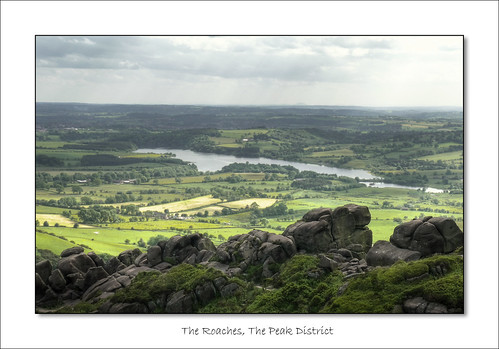 The Roaches (June 2009 #4)