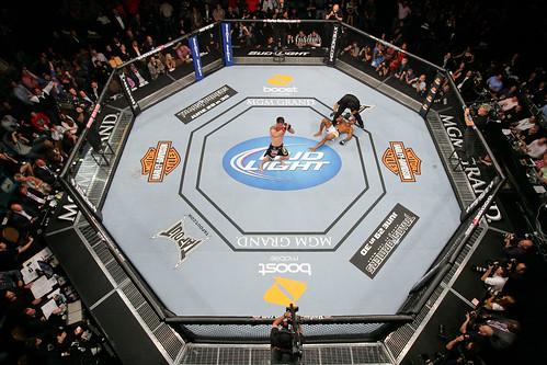 UFC 130: Jorge Santiago vs Brian Stann