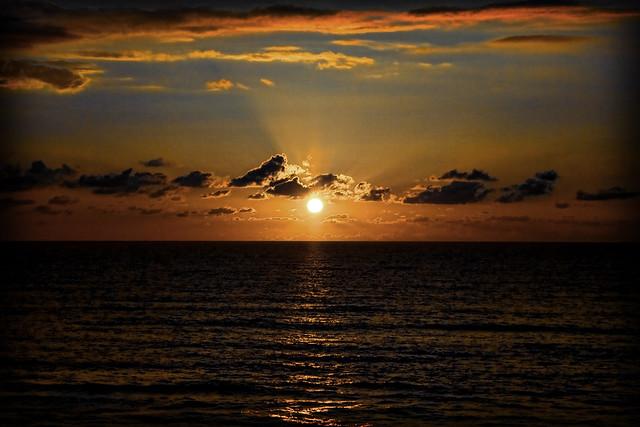 Islander New Smyrna Beach Reviews