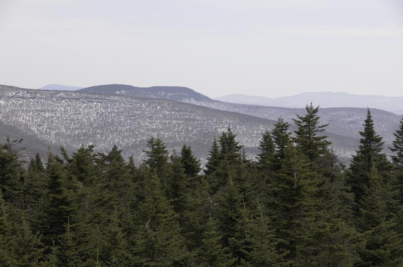 View from balsam mountain fire tower for Balsam mountain
