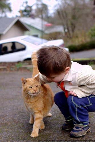 kitty whisperer    MG 9755