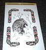 Eagle eyes - traditional Haida style