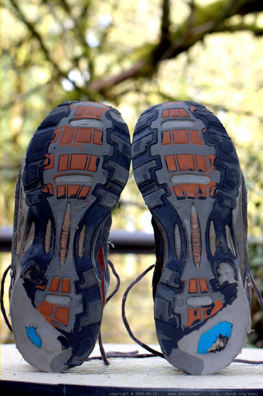 Hard Trail Running Shoes