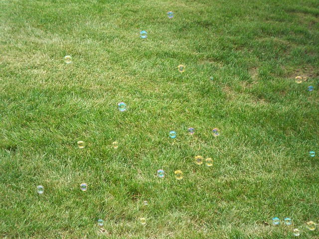 bubbles over grass