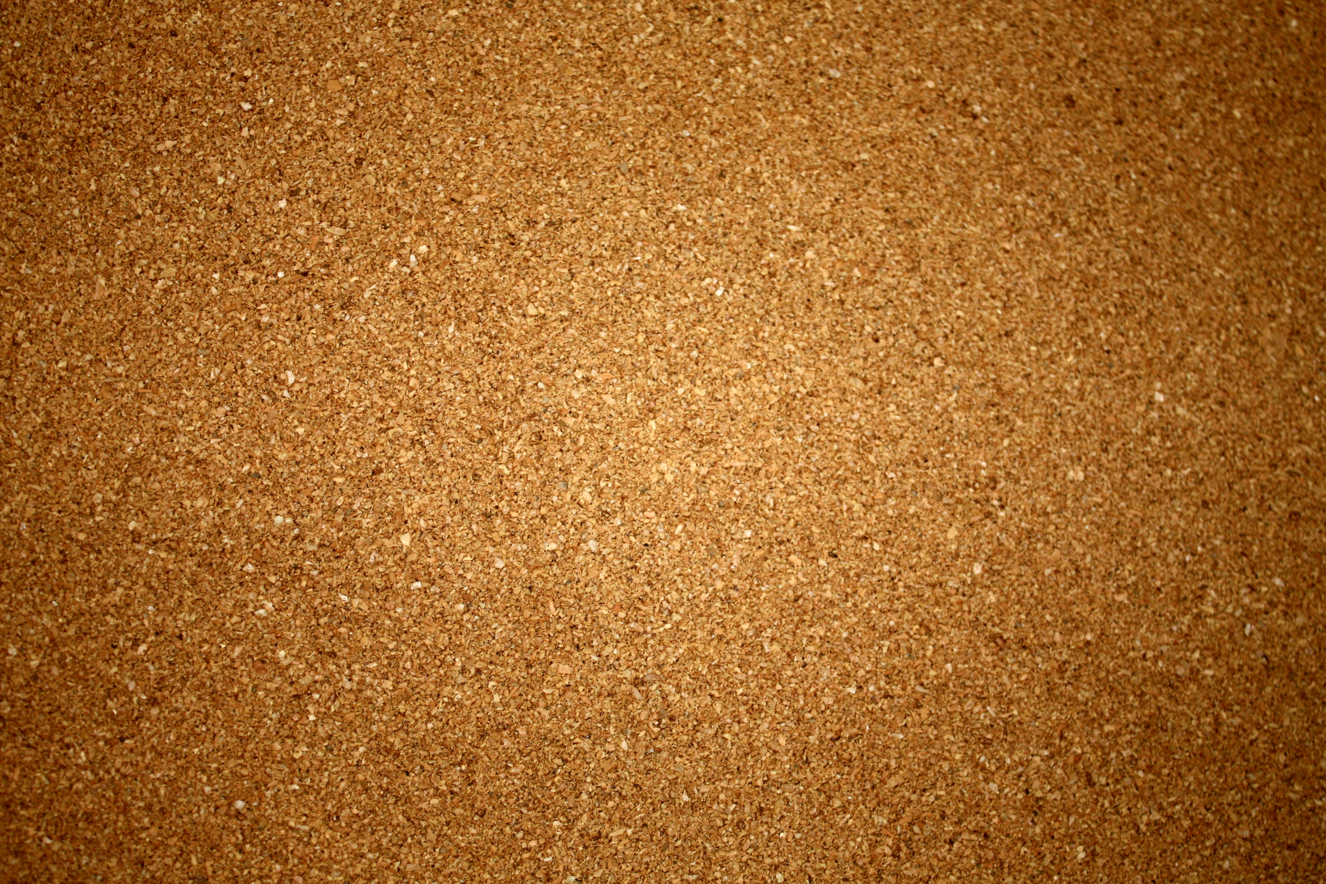 cork board flickr photo sharing