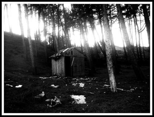 trees mountain tree church forrest hellas greece macedonia griechenland makedonien makedonia blackwhitephotos axioupolis macedonien