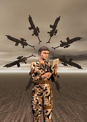 8 of Information: Trillicom Arms Inc.
